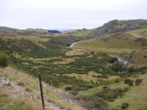 Taieri River looking North